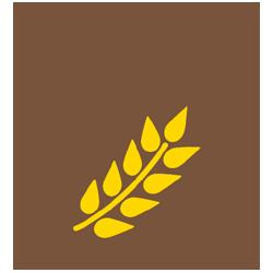 commodity image